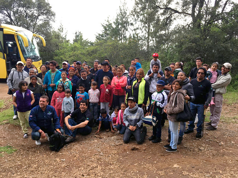 Envirofit employees planted over 300 trees