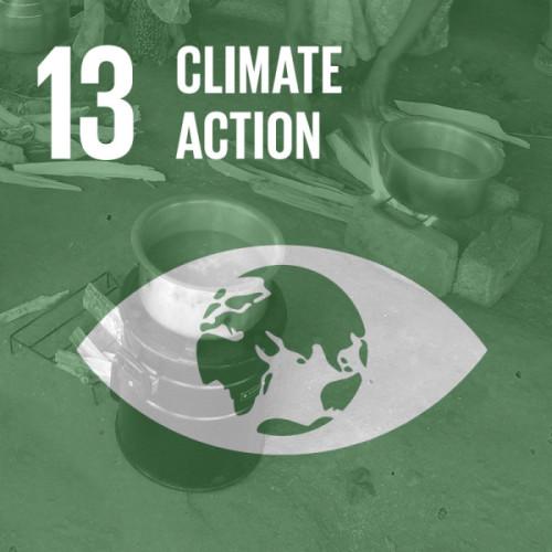 SDG #13